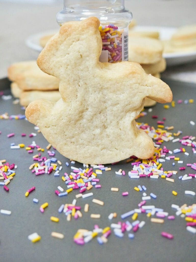 Cute Rocking Horse Cookie Recipe Into The Cookie Jar