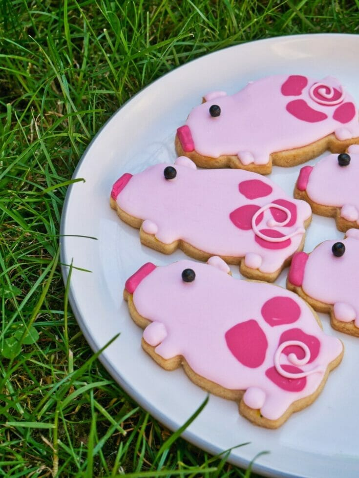 Decorated Pig Cookies